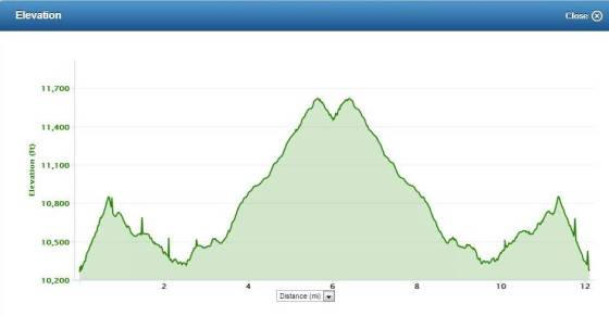 15 Miler Elevation Profile