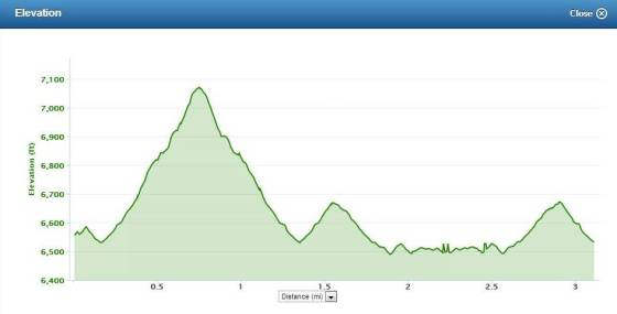 Typical short trail run elevation profile