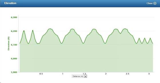 Hill Repeats Elevation Profile
