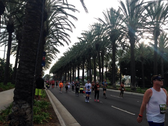 The last couple of miles through palm tree lined streets!